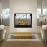 2 Sided Fireplace Inserts