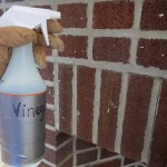 How to Paint Fireplace Brick